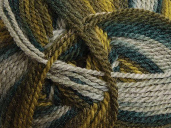 Ashford Tekapo Random Dyed Yarn - Evergreen